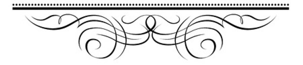 bottom-divider
